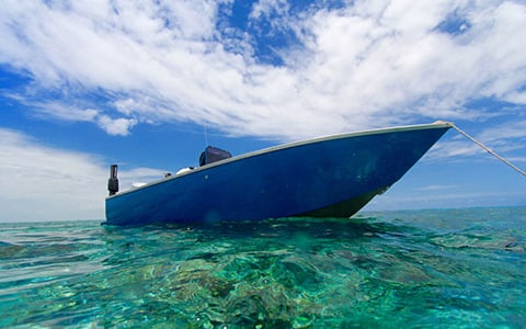 OCEAN BLUE CUSTOM 6M